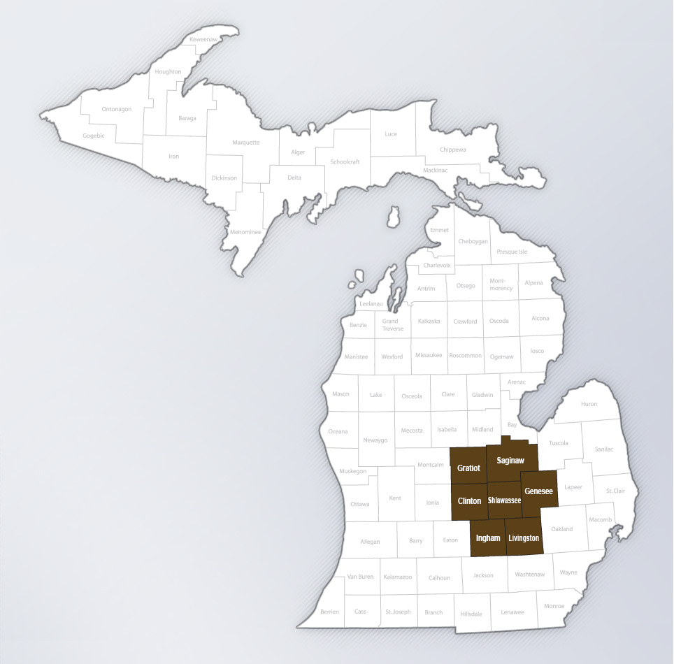 michigan operations counties